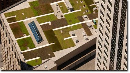 Roofing Contractors, Roofer Atlas Apex Roofing   Green Roofing
